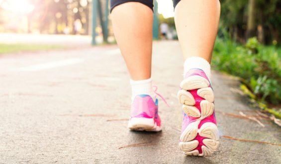 Co powinien zawierać program treningowy na masę?